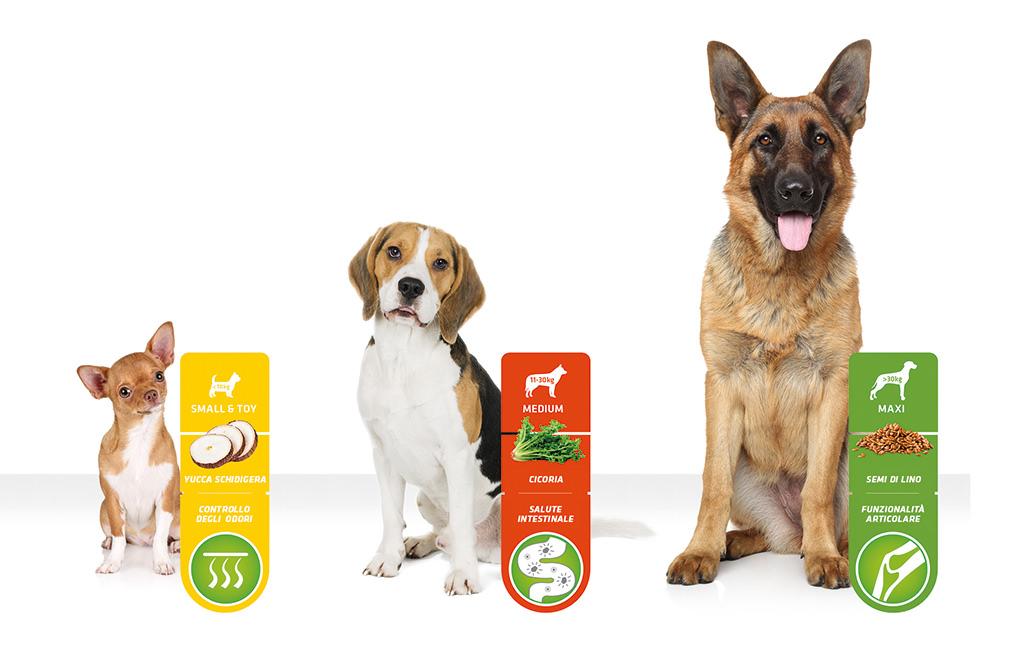 Alimentazione su misura per cani